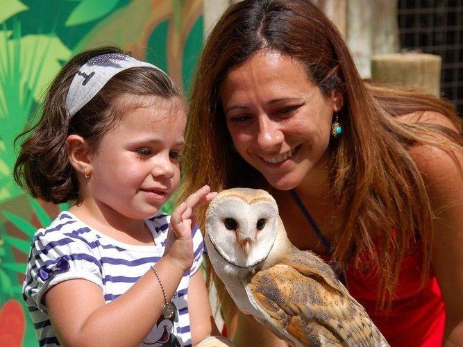 Взаимодействие с животными magic natura animal, waterpark resort бенидорме